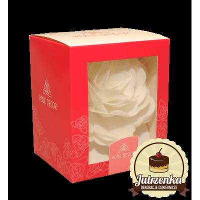 Róża chińska wielka