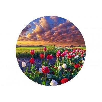 nadruk jadalny na tort kwiaty tulipany