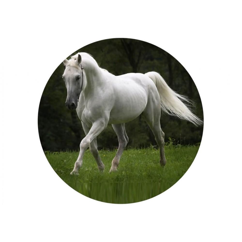 nadruk jadalny na tort konie