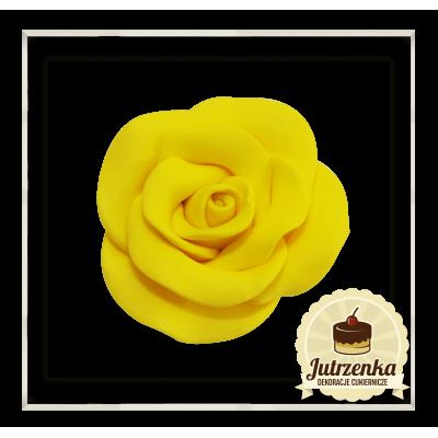 żółta róża cukrowa