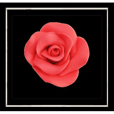 kolor czerwony róża cukrowa
