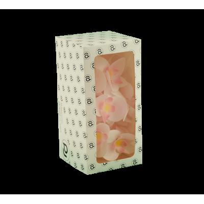 Storczyki waflowe w pudełkach